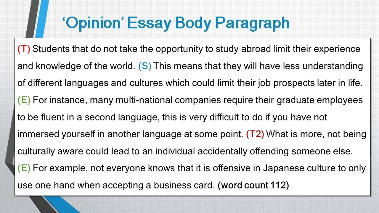 Body Paragraph Essay Example | World Of Example within Body Paragraph Essay Example 18811