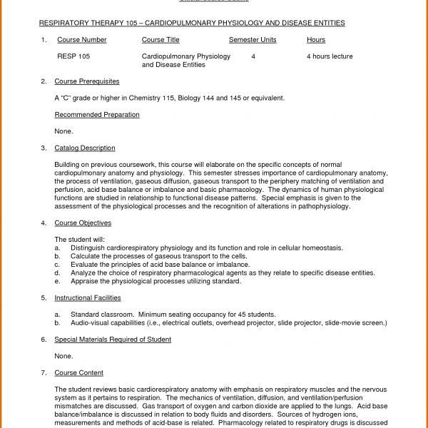 College Essay Outline Template \u2013 Northfourthwall within College
