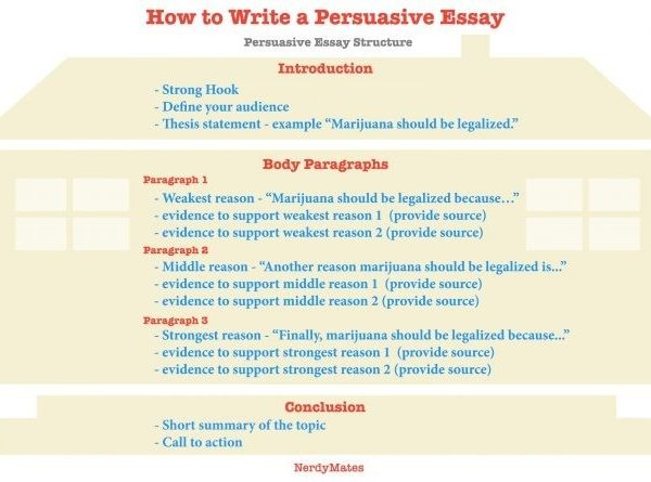 Examples Of Conclusion Paragraphs For Persuasive Essays for ...