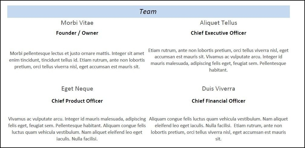 Management Team Example | World Of Example inside Management Team Example 21371