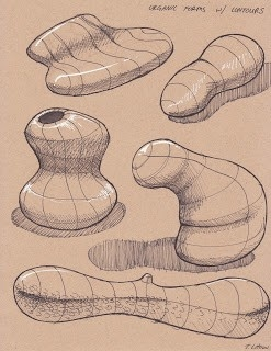 Tyler Chow: Dynamic Sketching Week 2 - Form And Texture | Drawing pertaining to Organic Form Drawing 23766