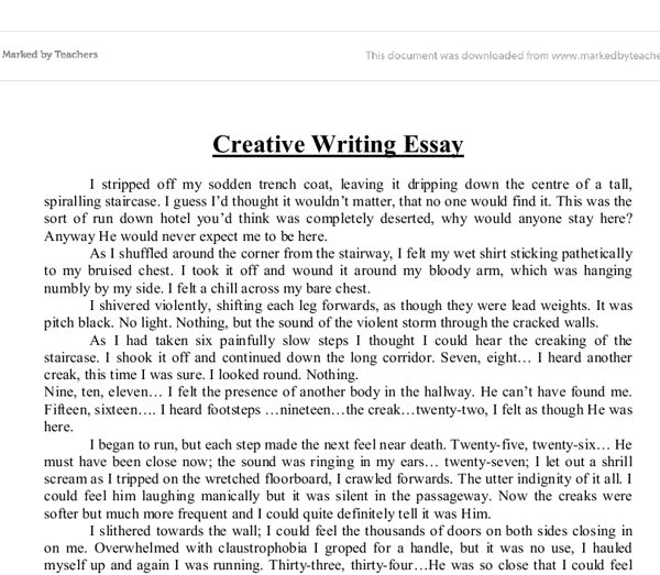 Write Essay Examples  Nardellidesign In Essay Writing Format In  Write Essay Examples  Nardellidesign In Essay Writing Format In English
