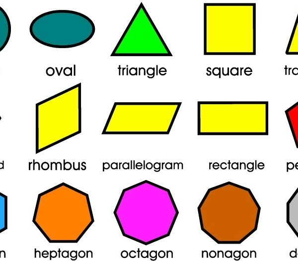 6Th Class Science ( Geometry In Primary Mathematics) | Adny