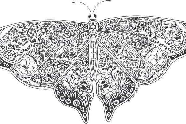 Beautiful Adult Coloring Pages Printable Butterfly #3116 Adult regarding Detailed Butterfly Coloring Pages For Adults 29481