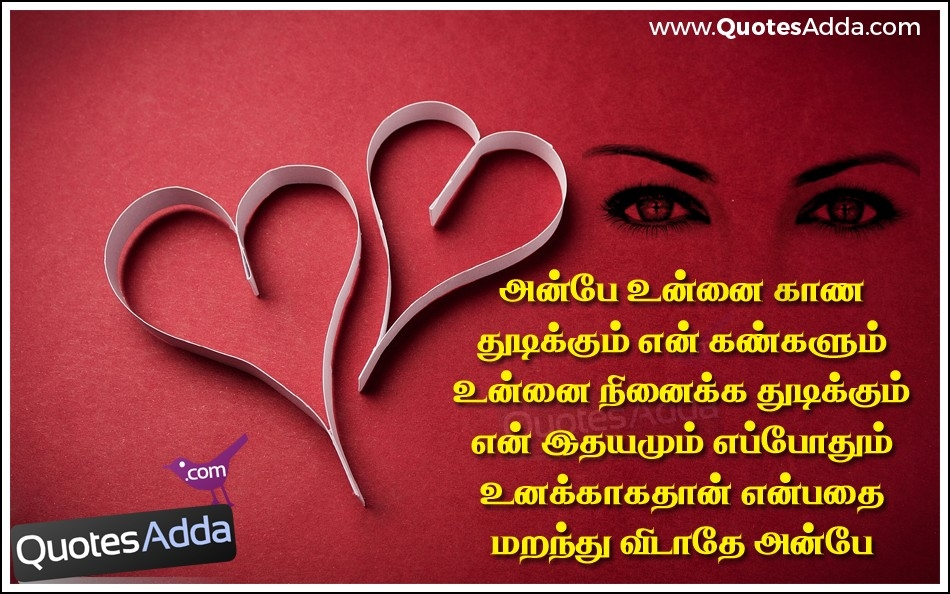 Best Love Quotes For Him In Tamil | Love Quotes Everyday with Sorry Images For Lover With Quotes In Tamil 28410