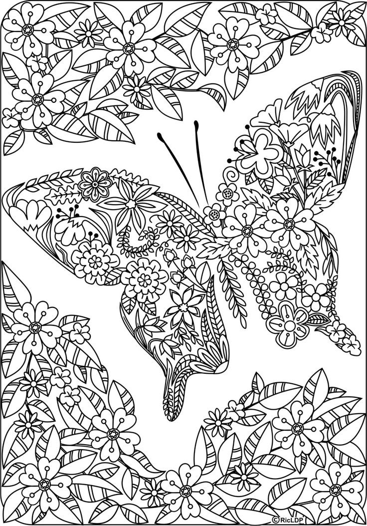 Detailed butterfly coloring pages for adults examples Best colouring books for adults 2018