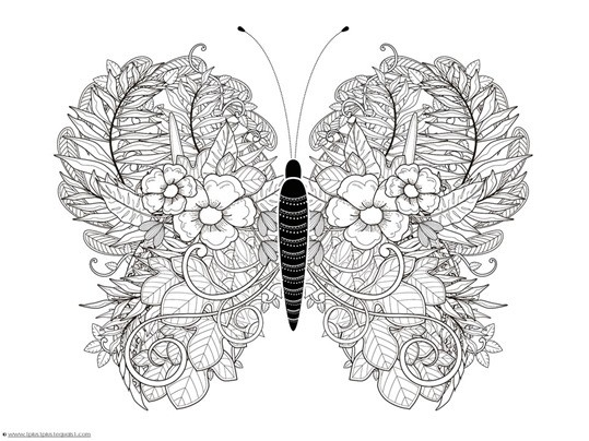 Butterfly Coloring Pages For Adults Butterfly Coloring Pages Cute in Detailed Butterfly Coloring Pages For Adults 29481