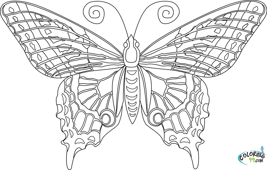 Coloring Books For Adults – Flora Public Library throughout Detailed Butterfly Coloring Pages For Adults 29481