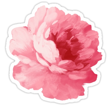 "Flower Pink Peony"" Stickers By Olga Chetverikova 