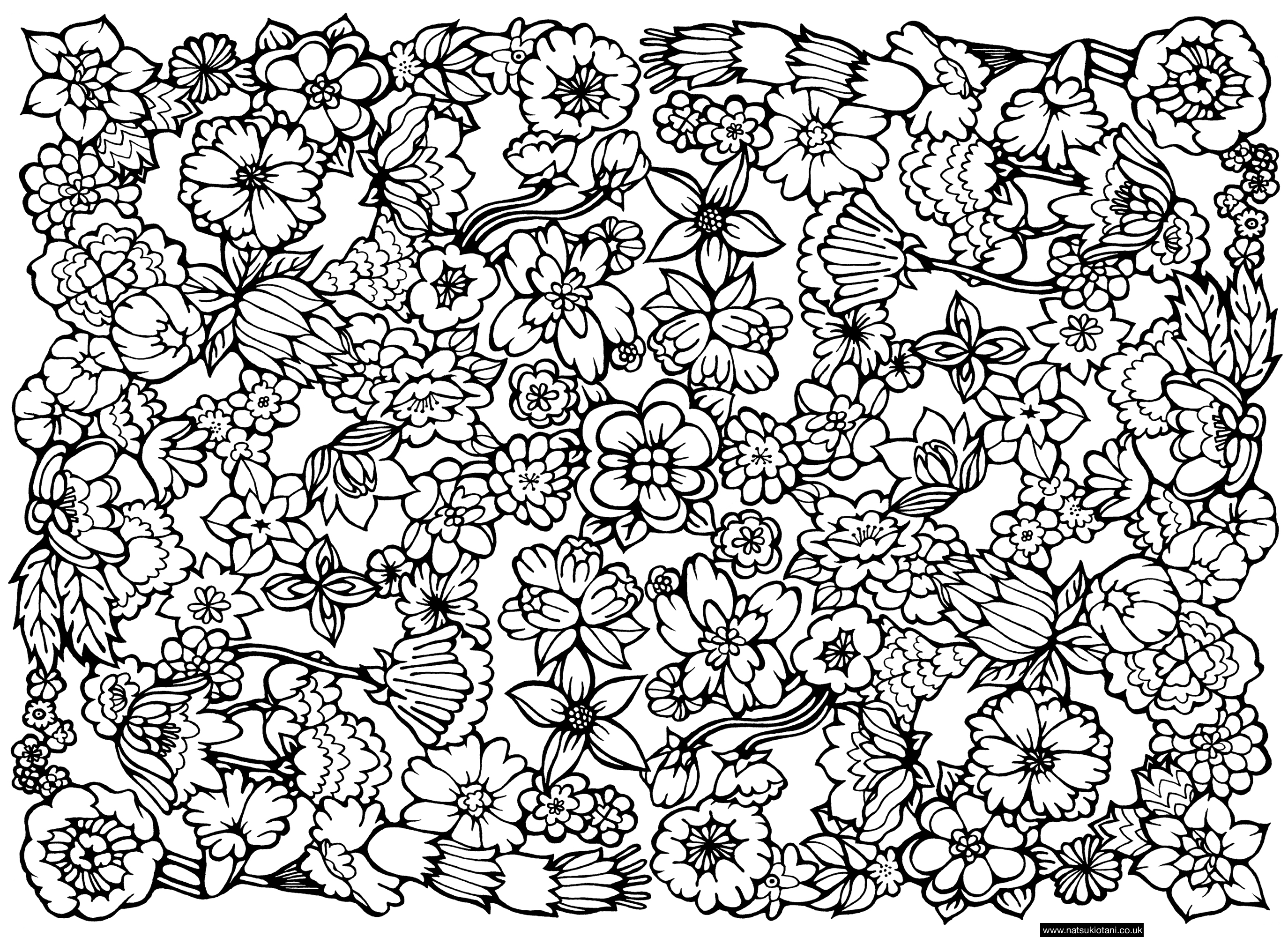 Free Coloring Pages Of Difficult Patterns 14386 Bestofcoloring Com in Detailed Pattern Coloring Pages 29461
