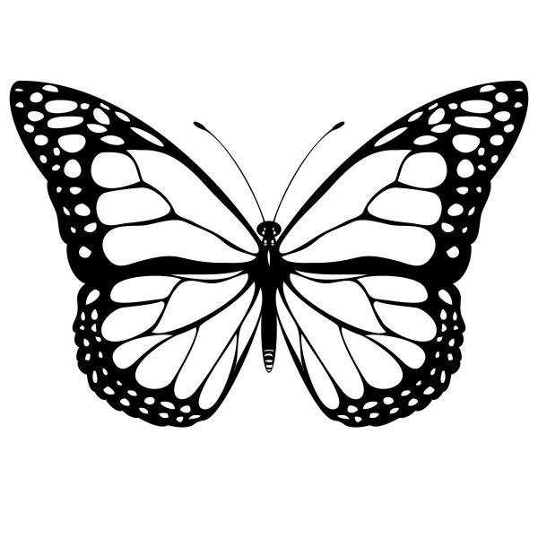 free printable butterfly coloring pages for kids printable with monarch butterfly template - Butterfly Template Free