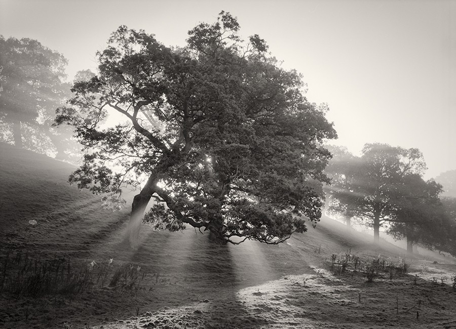 Martin Henson Fine Art Black And White Photographer regarding Black And White Landscape Photography 29887