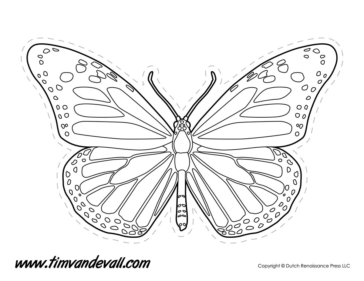 Monarch Butterfly Outline – Tim's Printables Throughout Monarch throughout Monarch Butterfly Template 29350