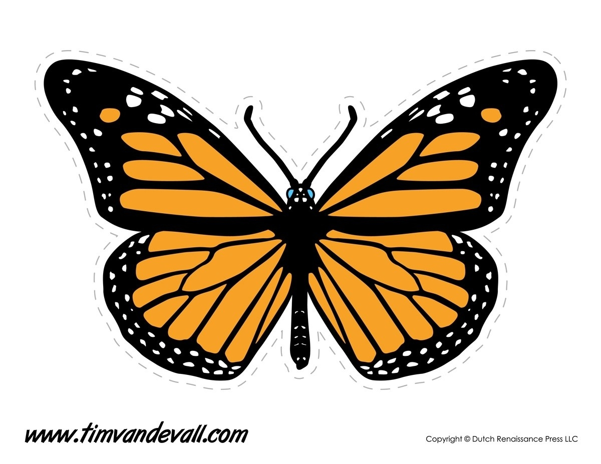 Monarch Butterfly Template Printable | Flogfolioweekly within Monarch Butterfly Template 29350