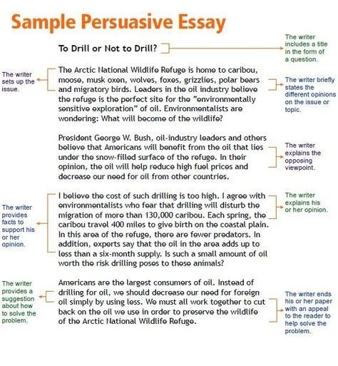 Opinion Article Examples For Kids  Persuasive Essay Writing With  Opinion Article Examples For Kids  Persuasive Essay Writing With  Persuasive Essay Examples College Level Thesis For Compare Contrast Essay also Thesis Statement Essays Essay On Good Health