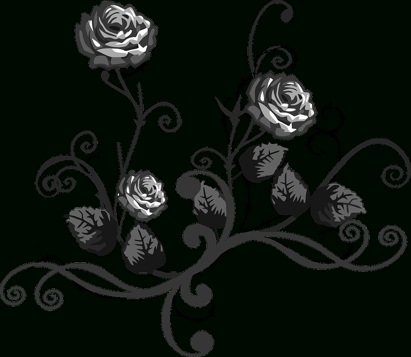 Rose Black White · Free Vector Graphic On Pixabay with Black And White Flower Abstract Png 29918