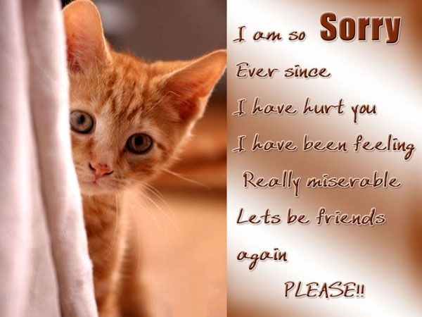 Sorry Quotes - I Am Sorry Ever Since I Have Hurt You, I Have Been regarding I Am Sorry Quotes For Hurting You Friend 28461