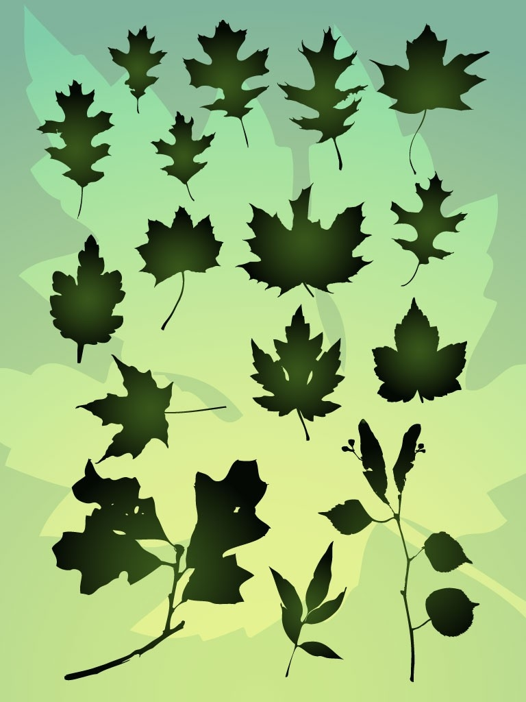 Vector Leaf Bundle pertaining to Organic Shapes In Nature Art 25643