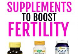 16 Fertility Boosting Vitamins For Women Trying To Conceive | How To pertaining to Vitamins To Help Get Pregnant
