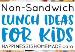 25 School Lunch Ideas For Kids - Happiness Is Homemade with Packed Lunch Ideas For Kids