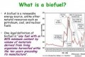 Definition Of Biofuel