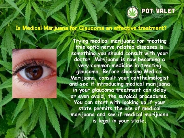 Cannabis For Treating Glaucoma – Cannabis And Psychedelics Journal inside How Does Marijuana Help Glaucoma 47439