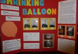 Central School Pto » Science Fair | Good To Know | Pinterest pertaining to Third Grade Science Project Ideas