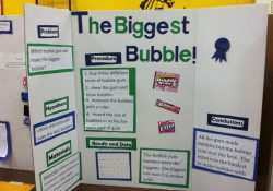Complete Diy Wood Science Projects 7Th Grade Ideas [] Radha Plans Idea in 7Th Grade Science Fair Project Ideas