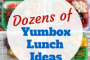 Yumbox Lunch Ideas