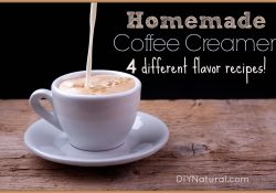 Homemade Coffee Creamer - Four Different Flavor Recipes intended for Diy Coffee Creamer