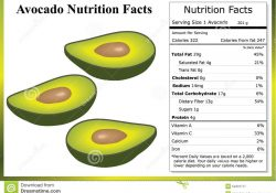 How Many Carbs In Avocado | How Many Of This, How Many Of That? regarding How Many Carbohydrates In An Avocado