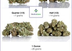 How Much Weed To Buy As A First-Time Patient with regard to How Many Grams Is An Ounce Of Weed