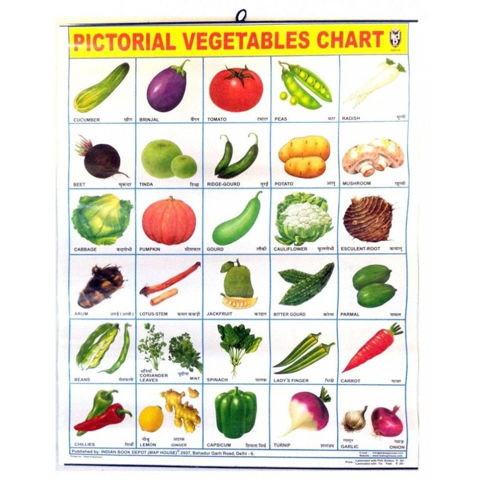 Image For All Vegetables Names In English | Places To Visit intended for List Of All Vegetables 36979