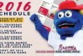 Mississippi Braves Schedule