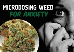 Microdosing Weed For Anxiety [Complete Guide] within Does Weed Help With Anxiety