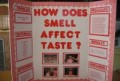 Science Fair Project Ideas For High School