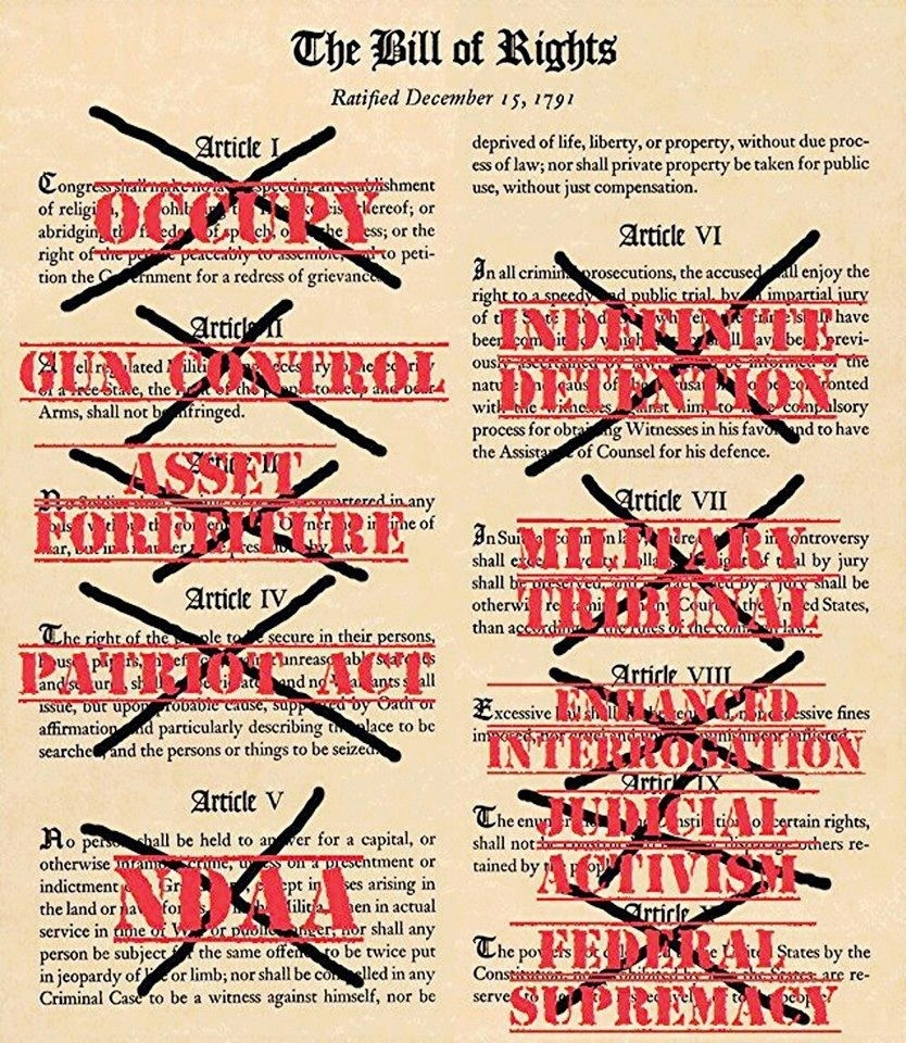 The Bill Of Rights: Violated   Wilsonncteaparty pertaining to Bill Of Rights Examples 56845