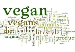 What Is A Vegan? A Modern Look At The Definition - Plenteousveg in Definition Of Vegan