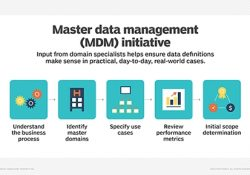 What Is Master Data Management (Mdm)? - Definition From Whatis in Master Data Management Definition