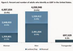 How Many People Are Lesbian, Gay, Bisexual And Transgender? | Cross within How Many Transgender People Are There
