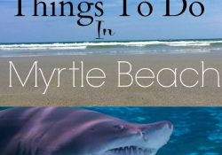 Things To Do In Myrtle Beach South Carolina | Travel Ideas within Vacation Ideas In The South